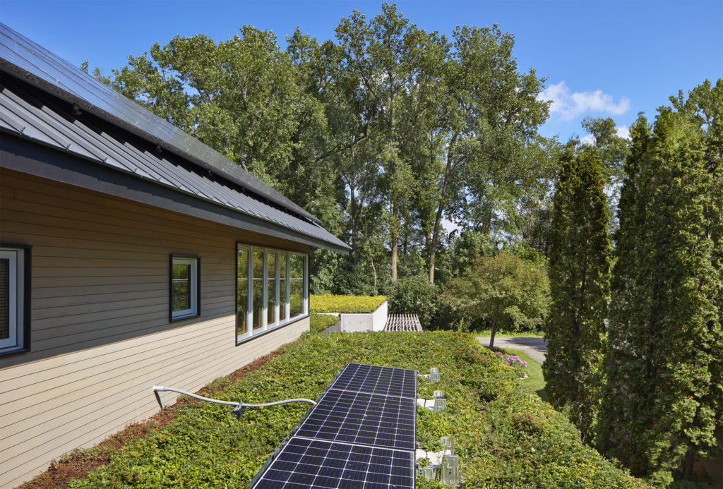 Green residential flat roof with vegetation and solar panels