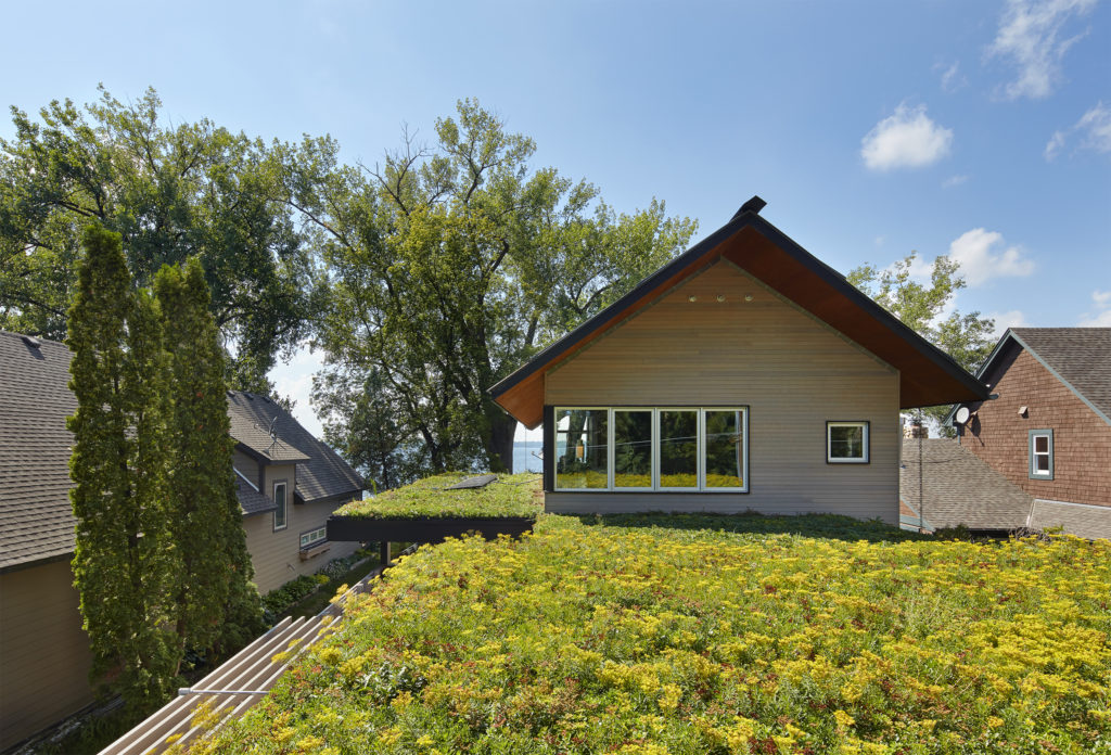 Green residential flat roof with vegetation over garage